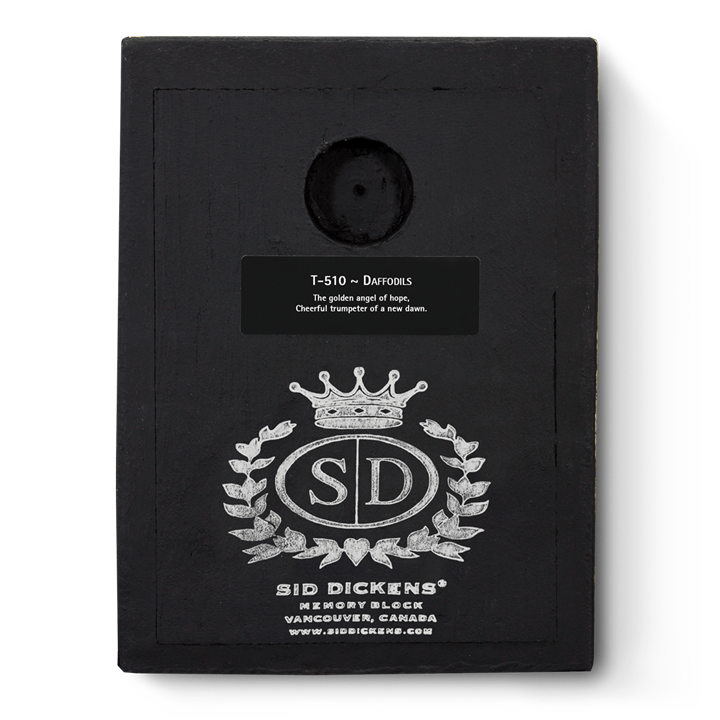 T510 - Daffodils - Memory Block Sid Dickens