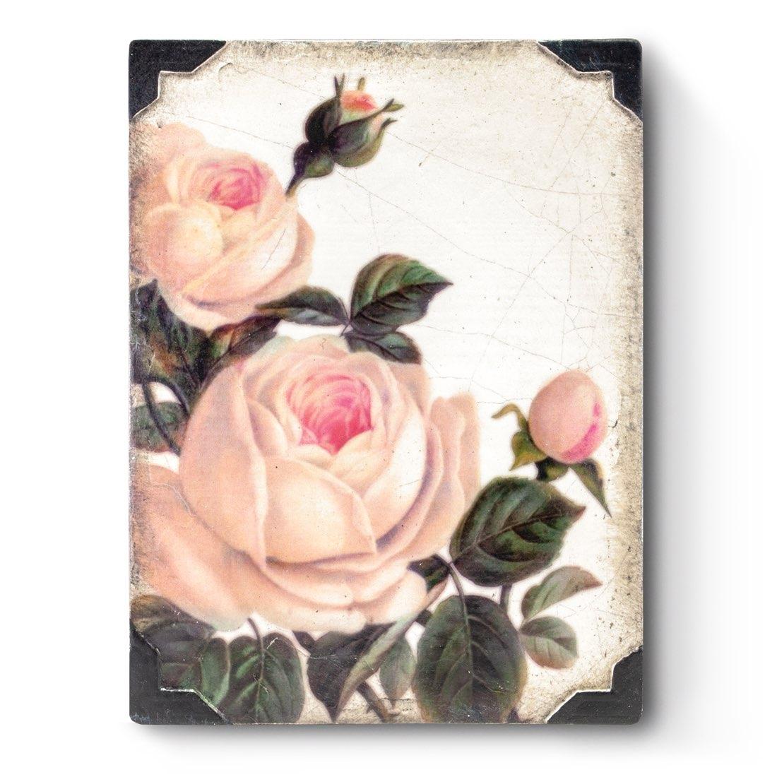 T464 - Gentle Rose - Memory Block Sid Dickens