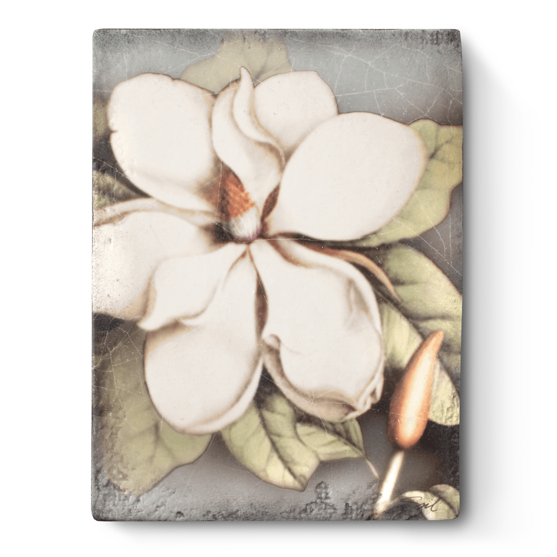 T301 - Magnolia - Memory Block Sid Dickens