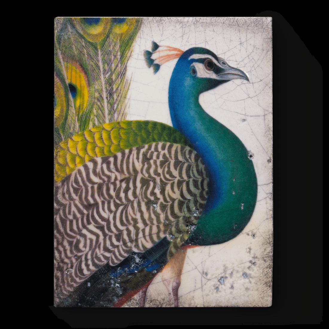 T287 - Fabled Bird - Memory Block Sid Dickens