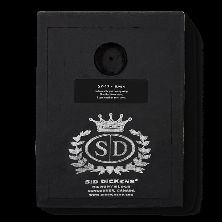 SP17 - Haven - Memory Block Sid Dickens