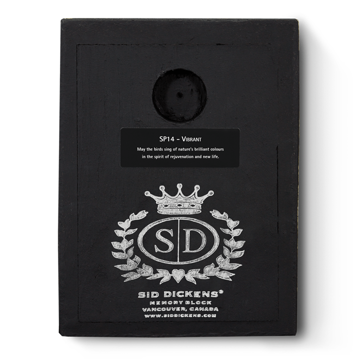 SP14 - Vibrant *retired* - Memory Block Sid Dickens