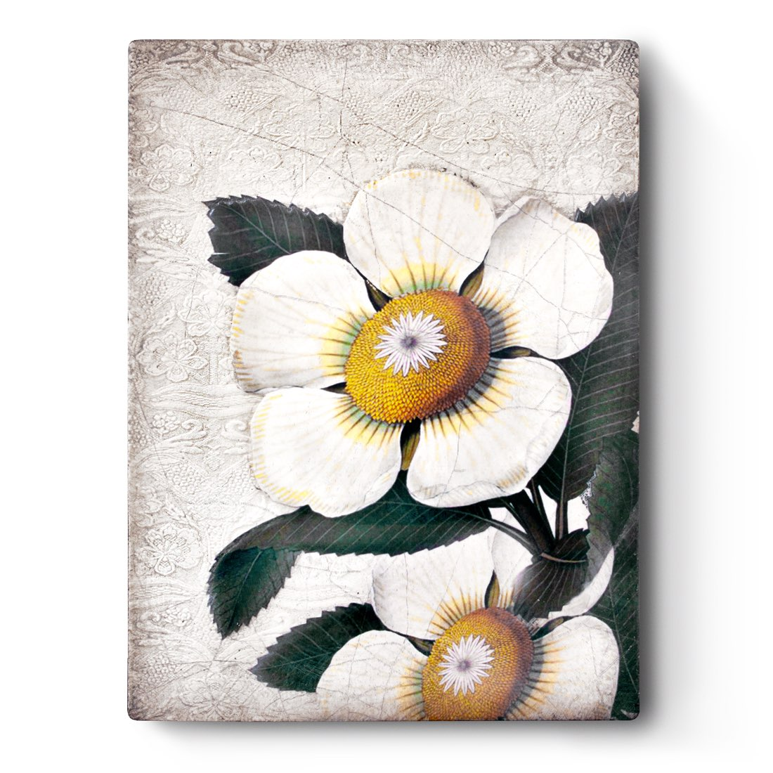 T487- White Blossoms *retired* - Memory Block Sid Dickens